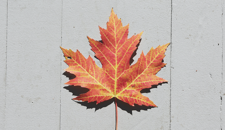 O CANADA – Great Conjunction of 2020 - outlook for Canada
